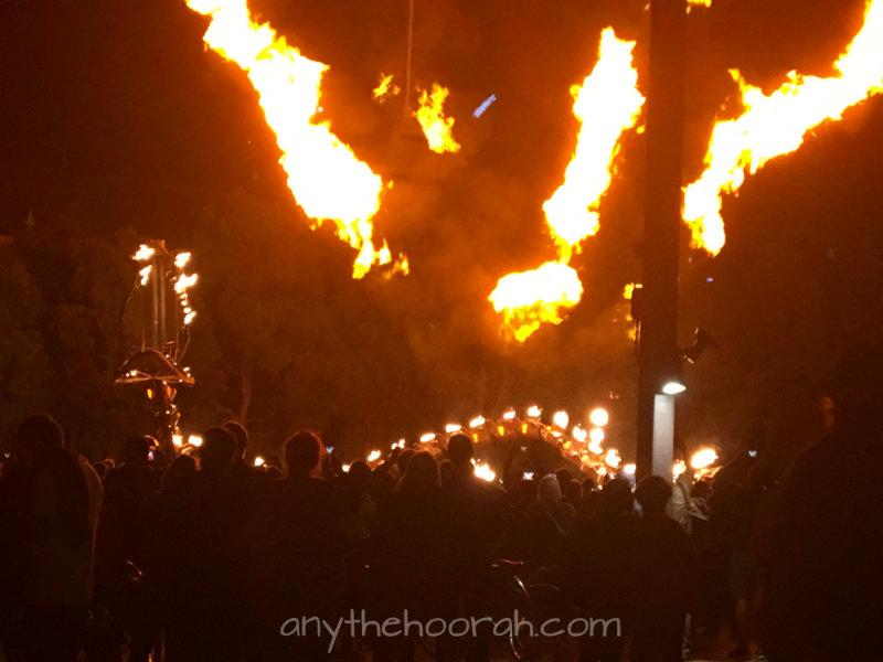white night melbourne dragon fire light art