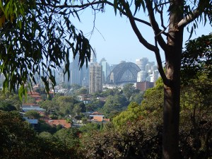 leafy harbour view to sydney from neutral bay 2014