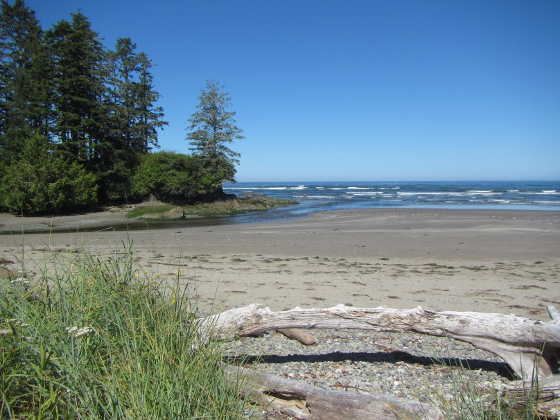 View from the Ozette River campsite