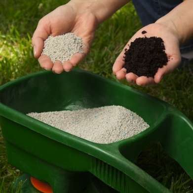 One of the 3 most important things for fall yard prep