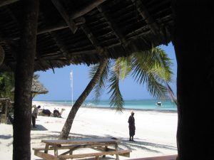 Volunteering in Kenya, the paradise of Diani Beach
