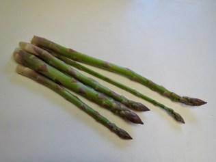 First Asparagus - 4/20/17