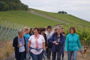 15-06-19-Weinbergswanderung_M_Groha_25