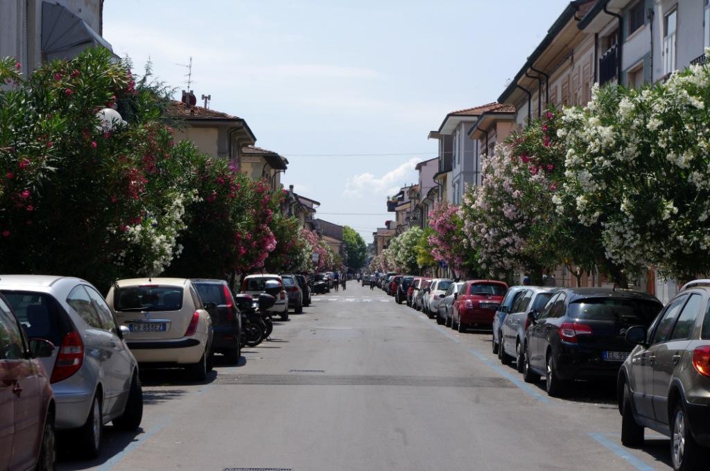 Viareggio (CC awesomatik.com)