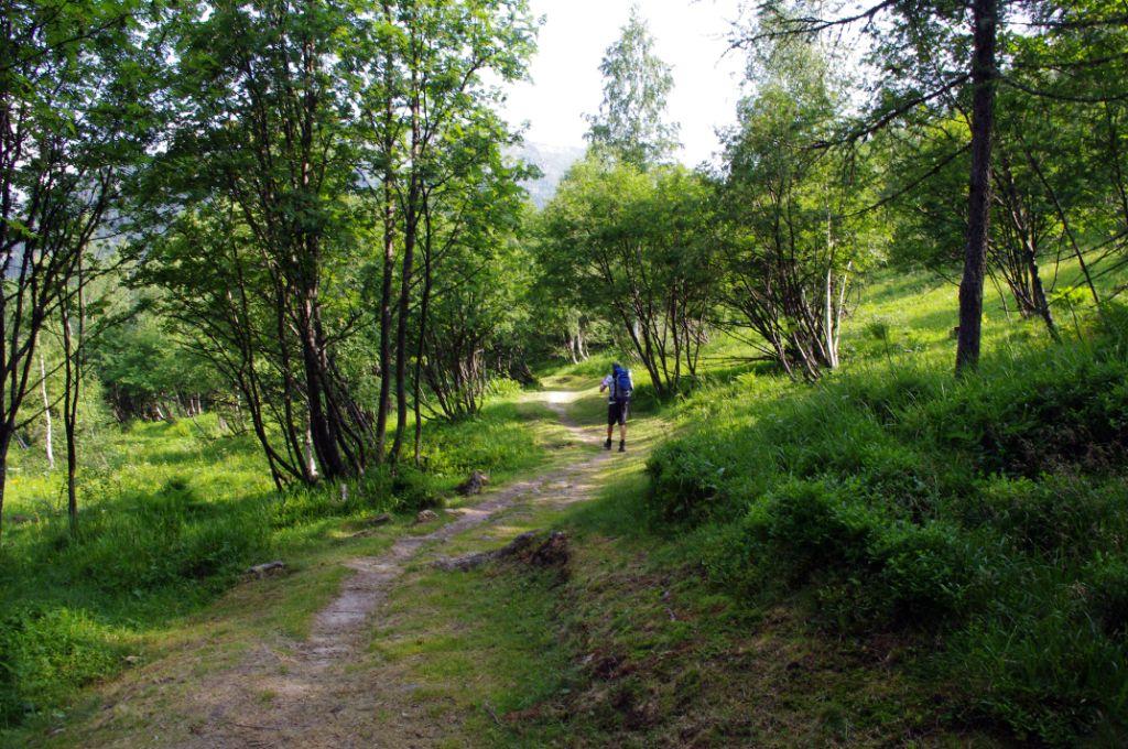 Walker's Haute Route - Stage 2 (CC awesomatik.com)