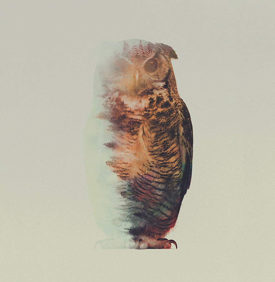 animals_landscapes_doubleexposure_02