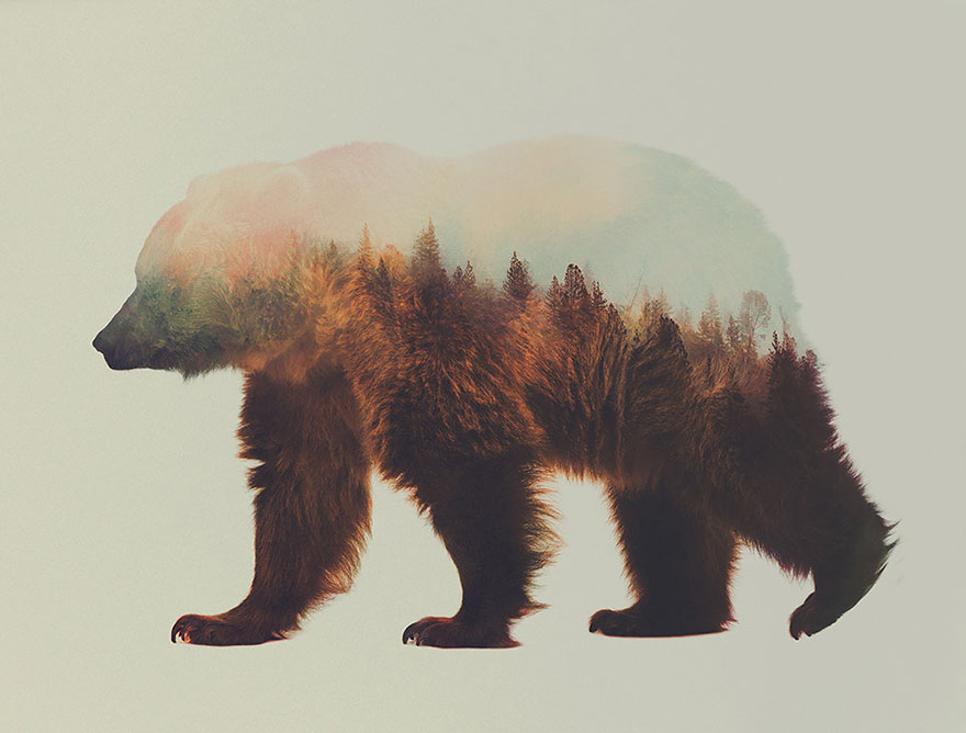 animals_landscapes_doubleexposure_09
