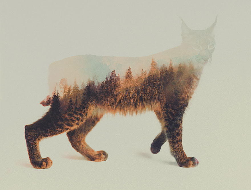 animals_landscapes_doubleexposure_13