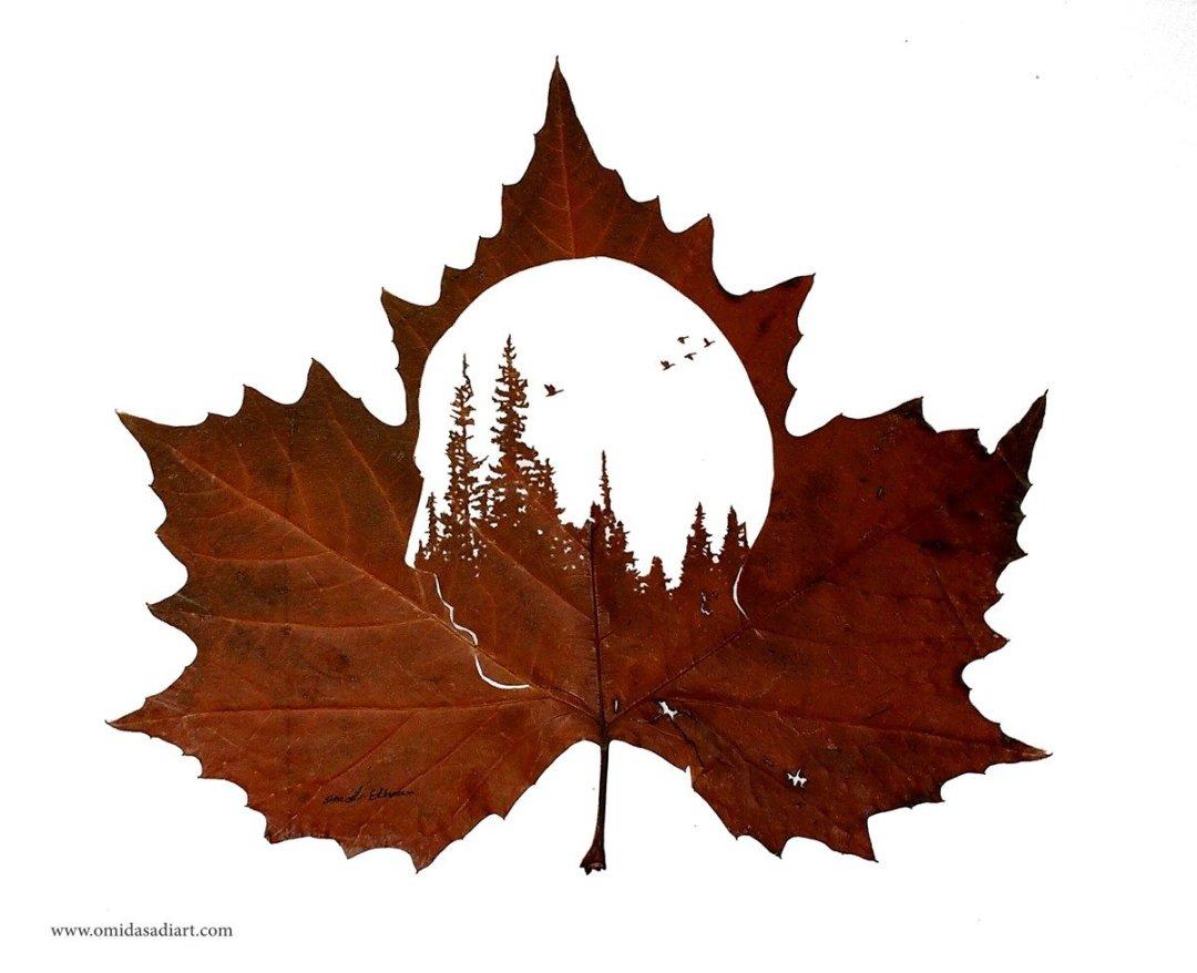 Omid Asadi Leaf Art Image 2