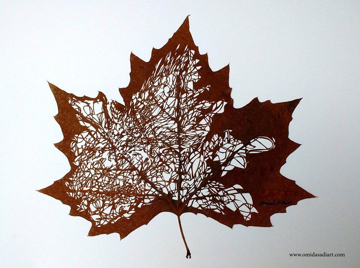 Omid Asadi Leaf Art Image 3