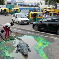 Indian Street Artist Spurs A Sluggish Civic Agency Into Action By His Biting Street Art Satire