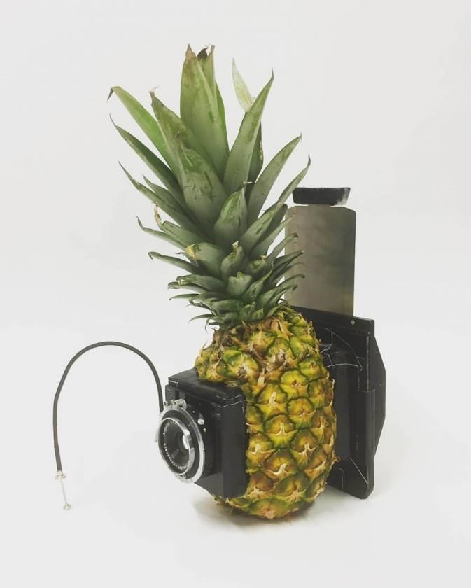 Medium Format Pineapple Camera