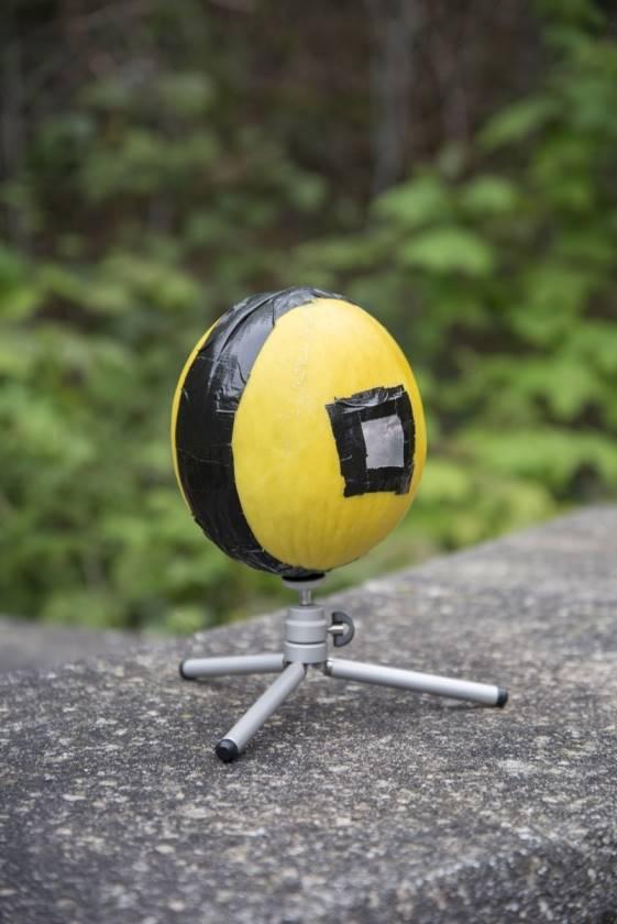 Honeydew Melon Pinhole Camera