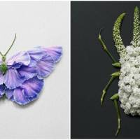 Creating Creatures From Petals And Leaves Is Making This Artist Popular On The Internet