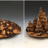 Wood Castles Appearing And Disappearing In Tree Burls Are Simply Fascinating To Watch