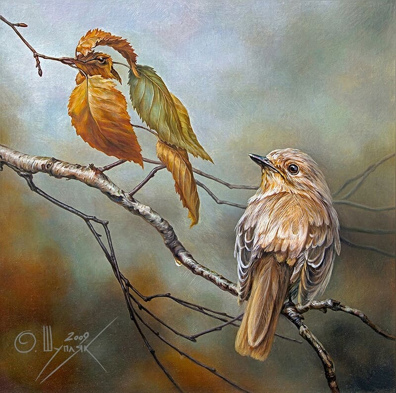 oleg shuplyak two birds