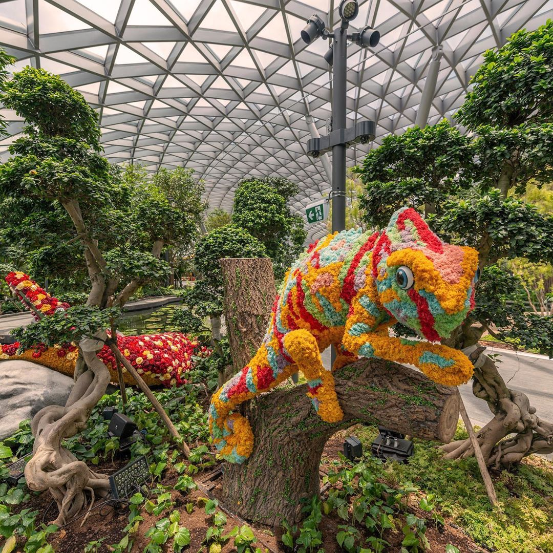 Jewel Changi Airport – The Nature Themed International Airport 7