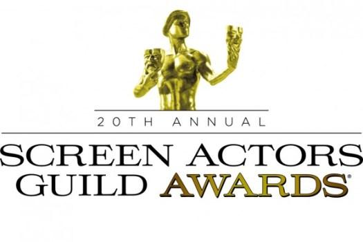 20th Screen Actors Guild Awards
