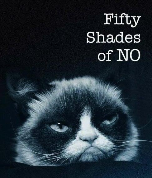 Bildergebnis für fifty shades of no