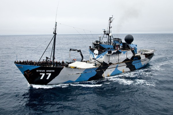 Sea Shepherd Conservation Society Is Sending Help To The ...