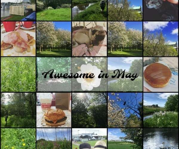 Awesome in May
