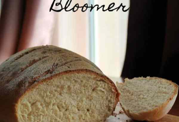 Basic Bloomer | How to Be Awesome on $20 a Day