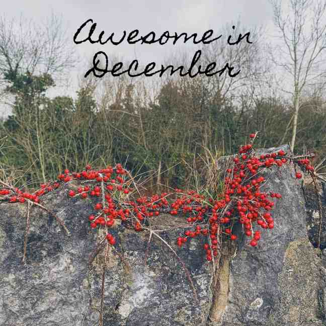 Awesome in December | How to Be Awesome on $20 a Day