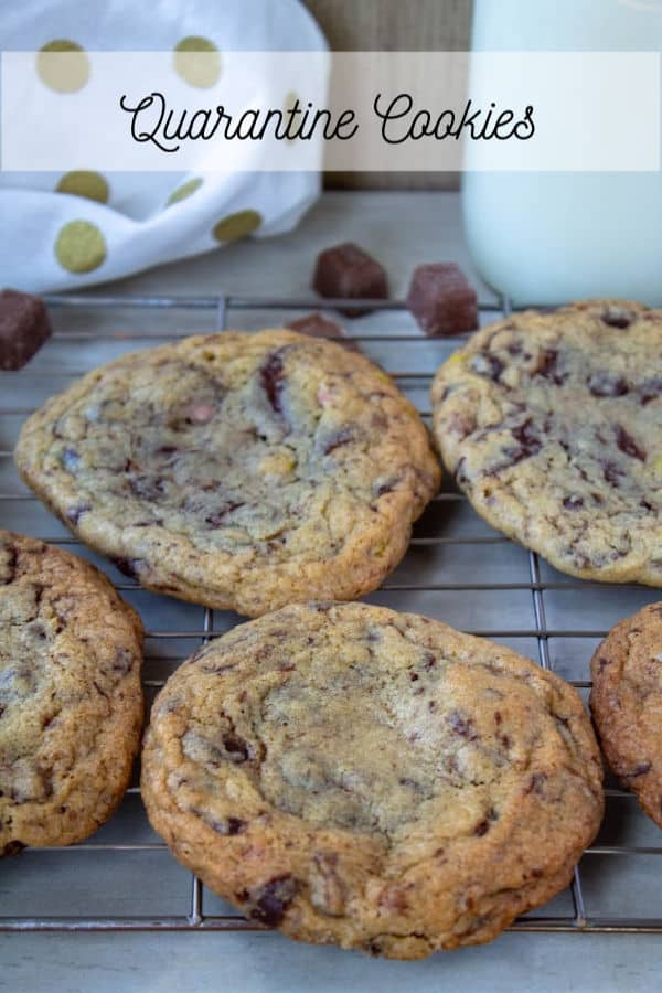 Quarantine Cookies | How to Be Awesome on $20 a Day