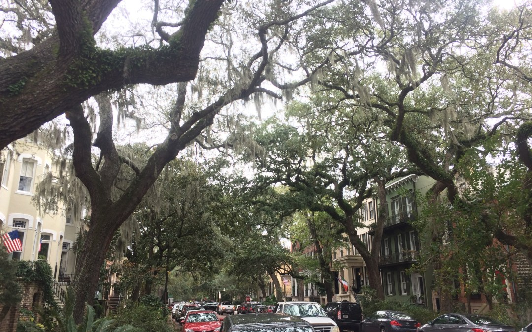 Visit Historic Savannah, Georgia