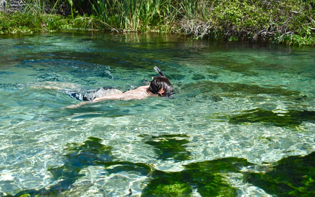 Exploring Weeki Wachee Springs, Florida