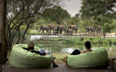 South Africa's Best Wildlife Region