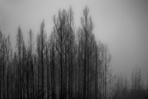 Winter pack (1)