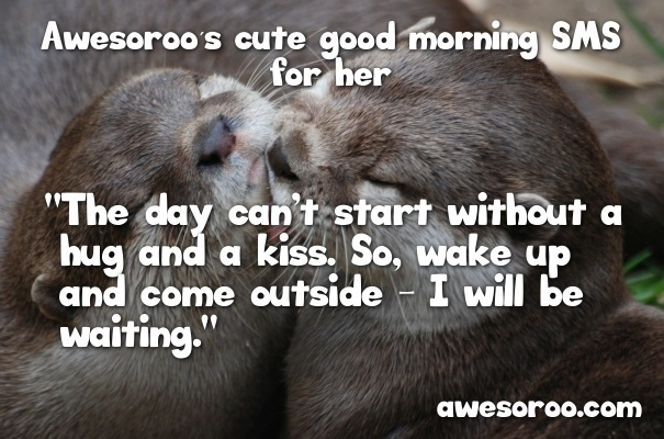 otters hugging and kissing