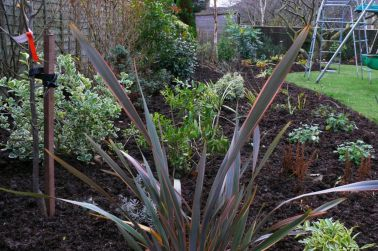 left-rear-with-phormium-in-foreground