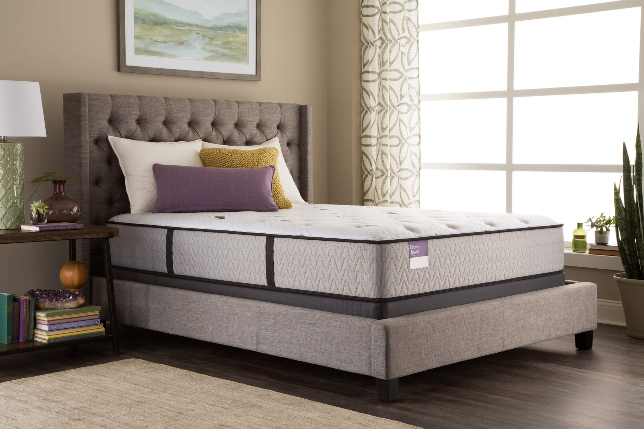 Sealy Black Opal Plush Beds For Less