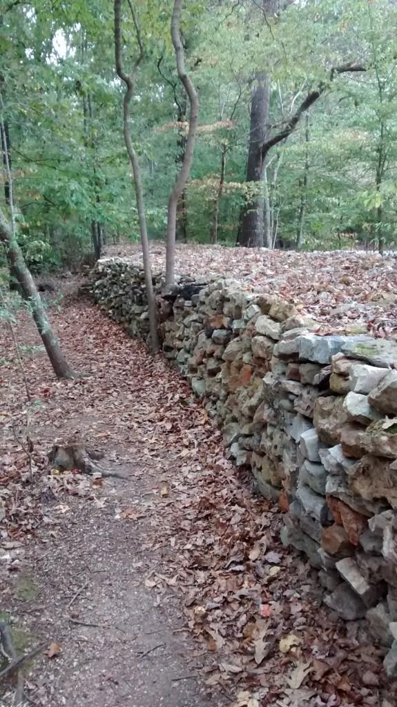 Tom's Wall, homeward