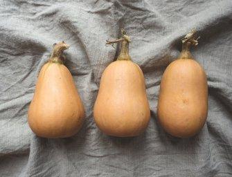 Mijn 5 favoriete recepten met pompoen