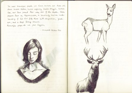 I feel the need to apologise for the girl on the left. Also apparently I don't know how to draw deer faces.