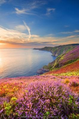 Cap Frehel, Brittany, France. Cliff at sunrise.