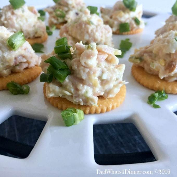 12 easy appetizer recipes to make ahead for your next party! | awonderfulthought.com