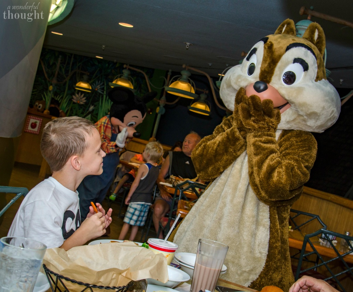 Our 10 Favorite Disney World Table Service Restaurants - A Wonderful ...