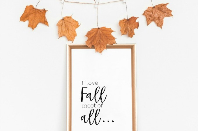Simple Touches of Fall Decor #simplefalldecor #falldecor #falldecoratingideas #simplefalldecoratingideas #simplefallvignettes #fall #awonderfulthought