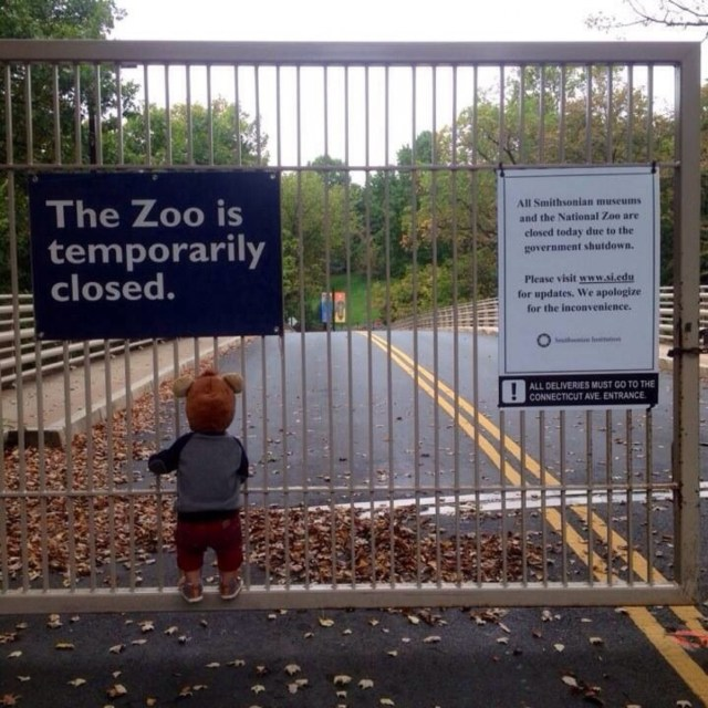 Ted Cruz behind bars for causing the shutdown of the zoo