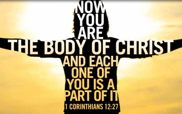 Image result for The Church as Christ's Body
