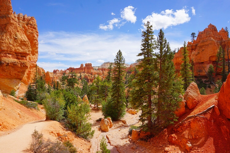 Bryce Canyon Photo Diary_Tips_3