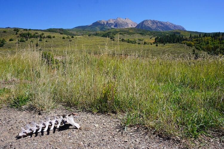 Colorado Photo Diary_31
