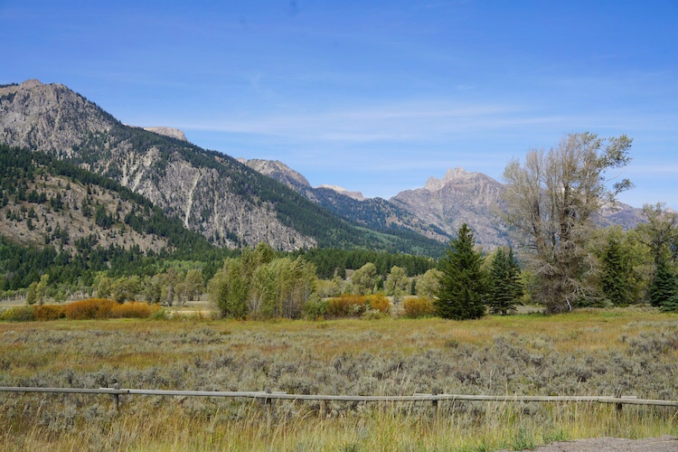 Yellowstone National Park Photo Diary 16