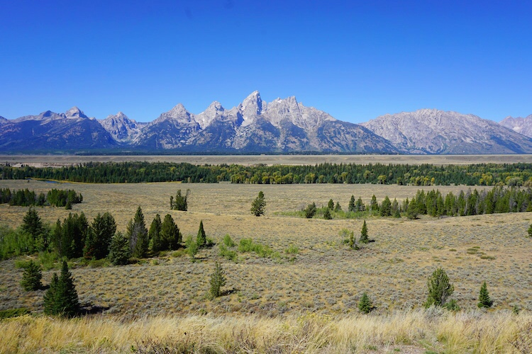 Yellowstone National Park Photo Diary 19