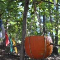 Make-it Monday - Pumpkin Birdfeeder
