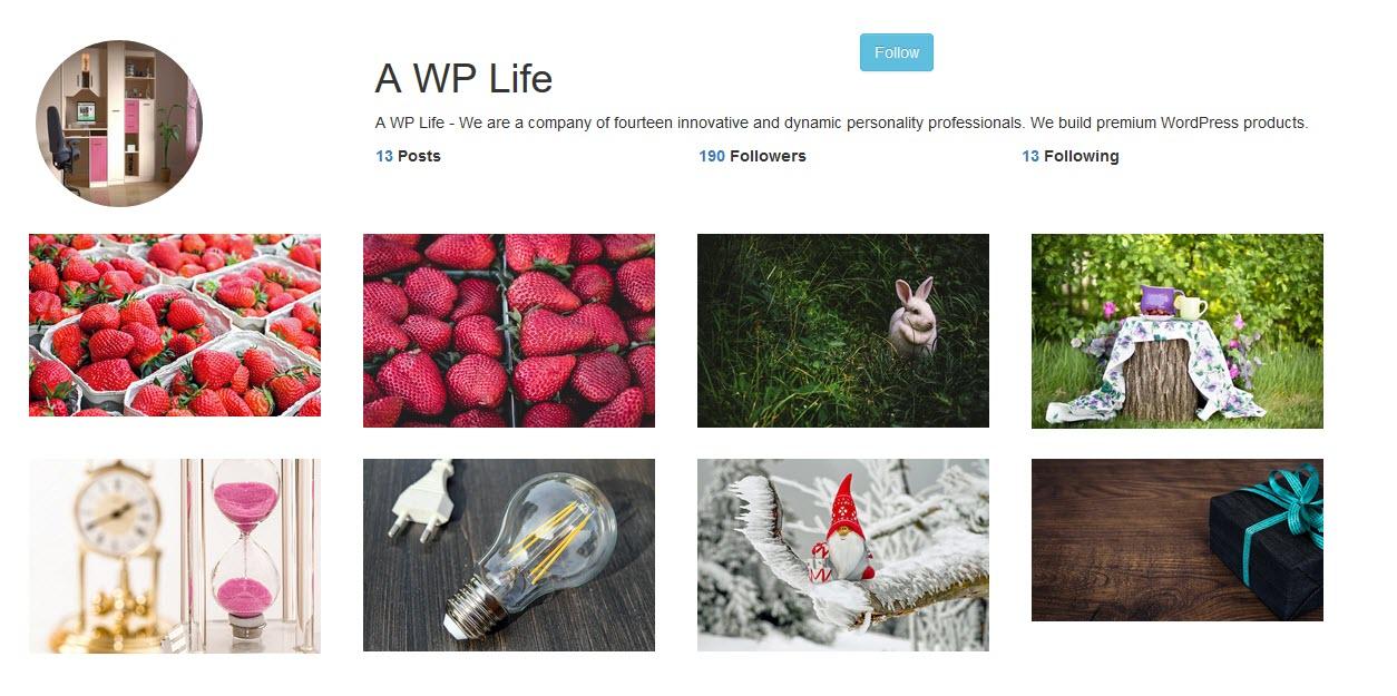Instagram type Gallery – Custom Insta Profile Plugin
